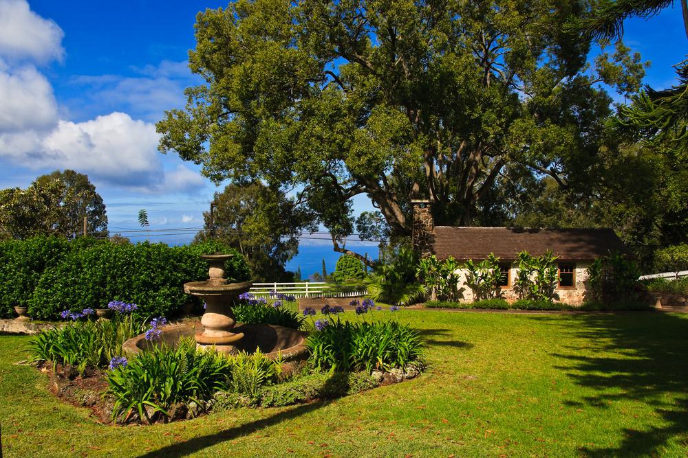 茂宜島釀酒廠 (Maui's Winery)