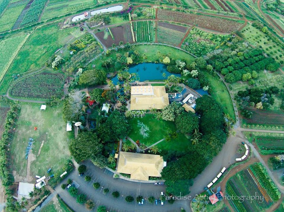 熱帶植物園(Maui Tropical Plantation)