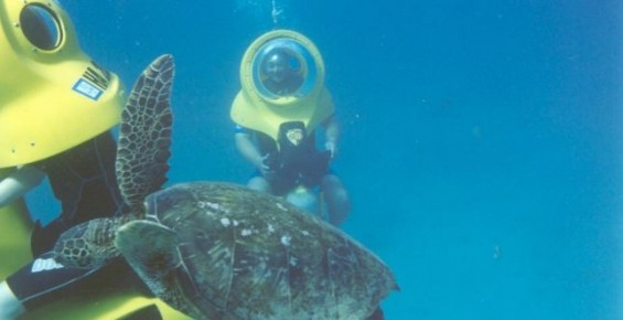 Ohana Hawaii Tour/夏自由行私人導遊 - Breathing Observation Bubble 海底世界摩托車